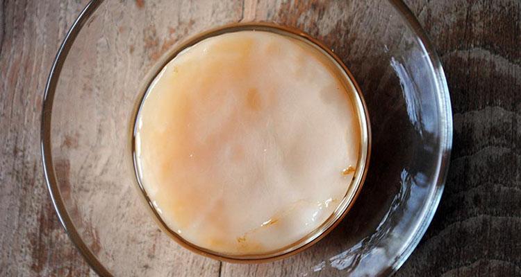 taller-de-kombucha-o-t-fermentado