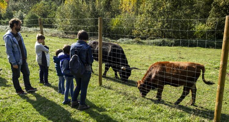Prehistovisita descubriendo los rincones del oso