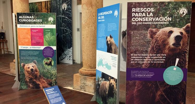Exposición Fundación Oso